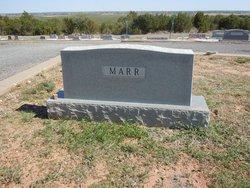 Odee S. Marr