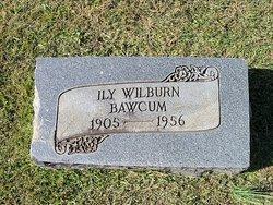Ily Wilburn Bawcum