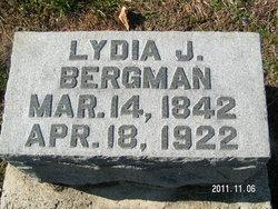 Lydia J. <i>McKinley</i> Bergman