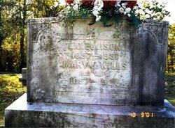 Mary Jane <i>Wills</i> Ellison