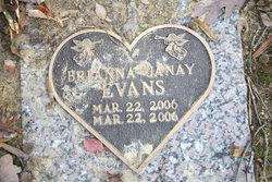Brianna Janay Evans