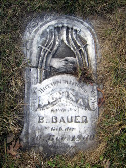 Alvina Carol <i>Germann</i> Bauer