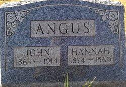 Hannah <i>Appleton</i> Angus