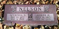 Scynthia Delilah <i>Pulsipher</i> Nelson