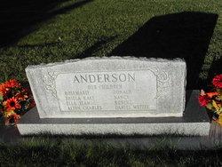 Alton Anderson