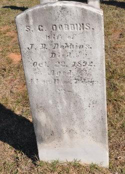 Sam C Dobbins