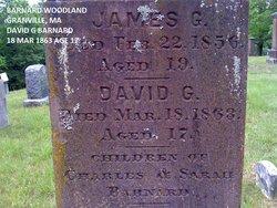 David G Barnard
