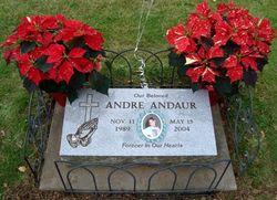 Andre Andaur
