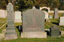 Harry J Galaid
