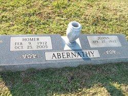 Homer Abernathy