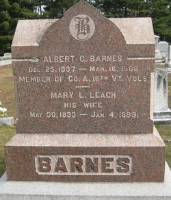 Albert G Barnes