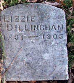 Lizzie Dillingham