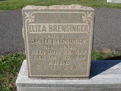 Elizabeth <i>Lentz</i> Brensinger