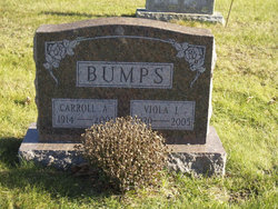 Viola <i>Cunningham</i> Bumps