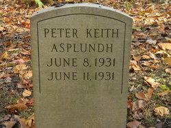 Peter Keith Asplundh