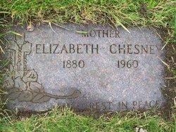 Elizabeth <i>Uttech</i> Chesney