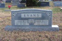 Alice <i>Woods</i> Evans