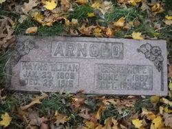 Wayne Elijah Arnold