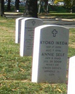 Annie C Arnold