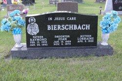 Raymond A Ray Bierschbach