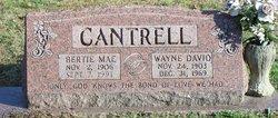 Bertie Mae <i>Neal</i> Cantrell