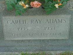 Carlie Ray Adams