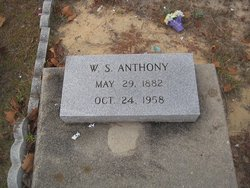 W S Anthony