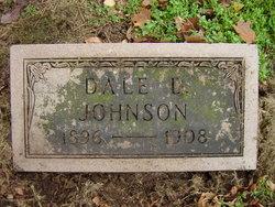 Dale D Johnson
