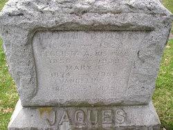 Benjamin C. Jaques