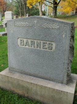 Ira N Barnes