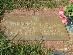 Theodore Roosevelt Carver