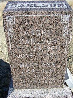 Andro Carlson