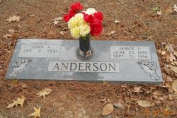 Janice L Anderson