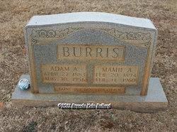 Adam Alexander Burris
