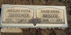 Louise Florence Lulu <i>Potter</i> Briscoe