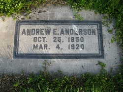 Andrew E Anderson