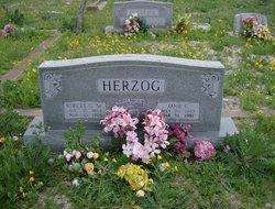 Robert Gus Bob Herzog, Sr