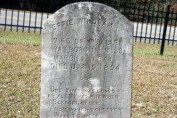 Effie Abigail <i>Windham</i> Allen