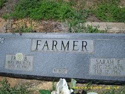 Sarah E. <i>Lake</i> Farmer