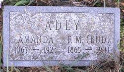 Amanda <i>Tosh</i> Adey