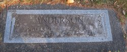 Anders M. Anderson