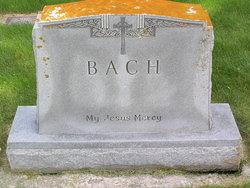 Adam Bach