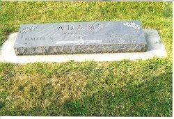 Martin Darrell Adams