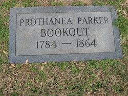 Prothanea <i>Parker</i> Bookout