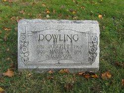 Joseph Patrick Dowling