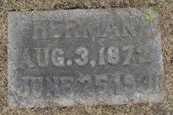 Herman Franke