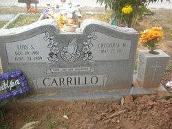Luis S. Carrillo