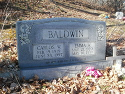 Carlos William Baldwin