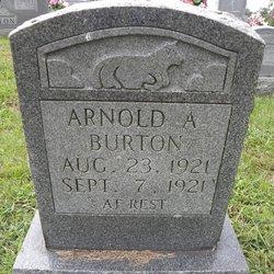 Arnold A Burton