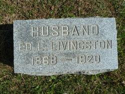 Edwin Lathrobe Livingston